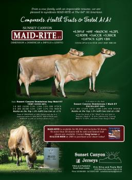 1 SHARE - SUNSET CANYON MAID-RITE-ET SYNDICATE
